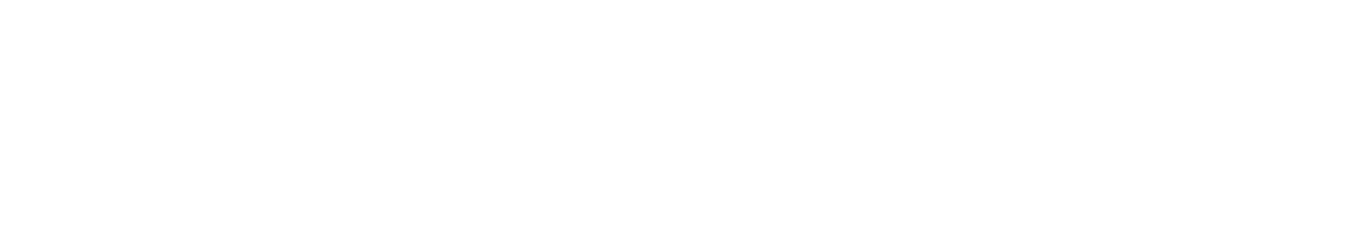 Retirement Investment Advisors logo